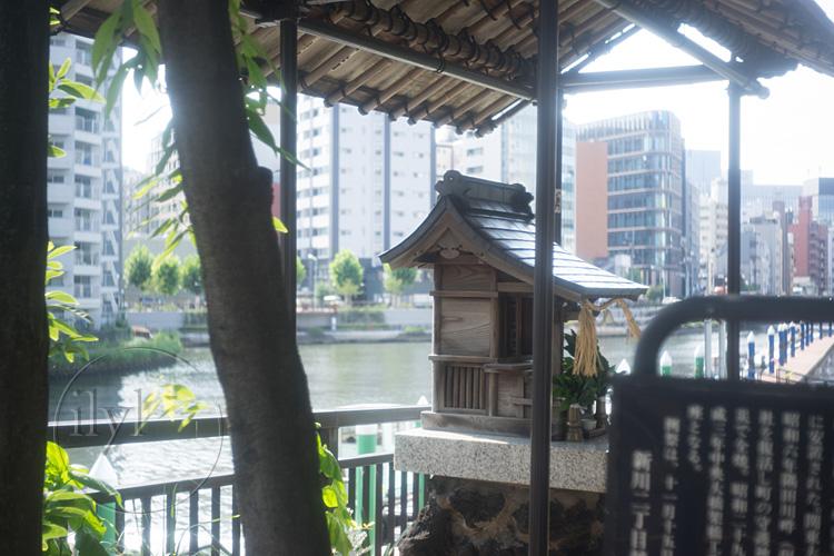 160720_DSC09260_Konishiroku50mm