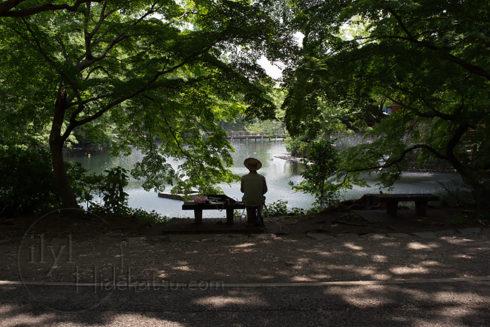 Flektogon 35mm F2.4 black which is blur and gradation expression are wonderful.  in Inokashira Park.*